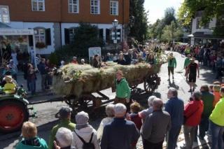 2016 Kreistrachtenfest_74